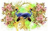 Bird Collection 36 Art Print