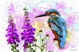 Bird Collection 40SEP2 Art Print