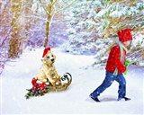 Christmas 2 Art Print