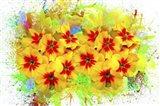Flowers Explosion SEP2 Art Print