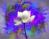 Flowers Explosion SEP3 Art Print