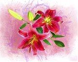 Flowers Explosion SEP4 Art Print