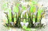 White Splendor Art Print