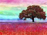 My Colorful Mind 2 Art Print
