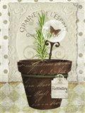 Herb Pots Rosemary Art Print