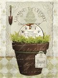 Herb Pot Thyme Art Print