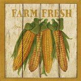 Farm Fresh Corn Art Print