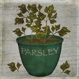 Herb Parsley Art Print