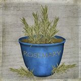 Herb Rosemary Art Print