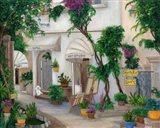 Isle of Capri Art Print