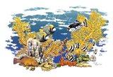 Barrier Reef Art Print