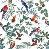 Aviary Multi Original Art Print