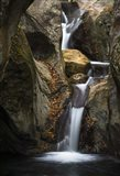 Autumn Waterfall Art Print