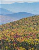 Blazing Mountain Art Print