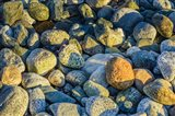 Shoreline Stones Art Print