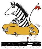Zippy Zebra Art Print