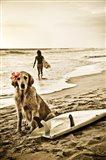 Dog Surfer Art Print