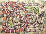 Coral Snake Ouroboros Art Print