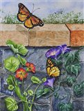 Monarchs, Nasturtiums and Morning Glories Art Print
