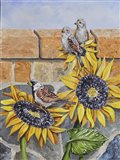 House Sparows with Sunflowers Art Print