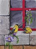 Gold Finches Art Print