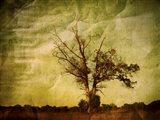 Imagination Itself Art Print