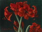 Crimson Beauties Art Print