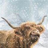 Highland Cow 1 Art Print