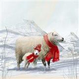 Sheep Red Scarf Art Print