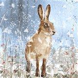 Winter Hare Art Print