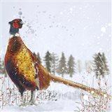 Christmas Pheasant Art Print