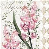Hyacinth I Art Print