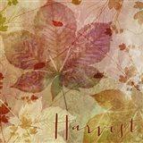 October Pastel I Art Print