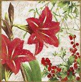Christmas Flowers II Art Print