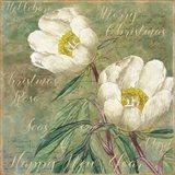 White Christmas Roses Art Print