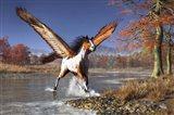 Autumn Pegasus Art Print