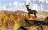 Buck Over Autumn Valley Art Print