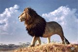 Impressionist Lion Art Print