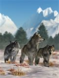 Three Wolves Art Print