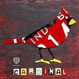 Indiana Cardinal Art Print