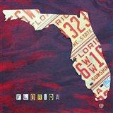 Florida License Plate Art Print