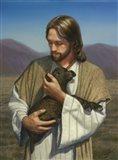 The Lost Lamb Art Print