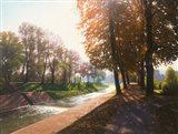 Sunny Fall Art Print