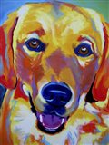 Sheamus Art Print