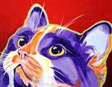 Cat Issa Art Print