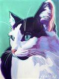 Cat Kitty Art Print