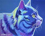 Cat - Blue Boy Art Print