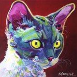 Cat - Devon Rex Art Print
