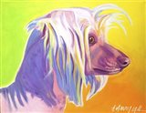 Chinese Crested - Profile Art Print