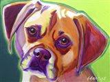 Puggle - Cooper Art Print